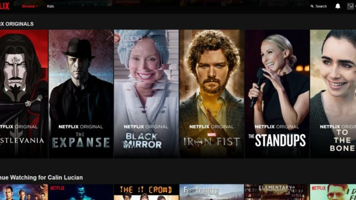Do You Need a VPN to Access Netflix from Another Country?
